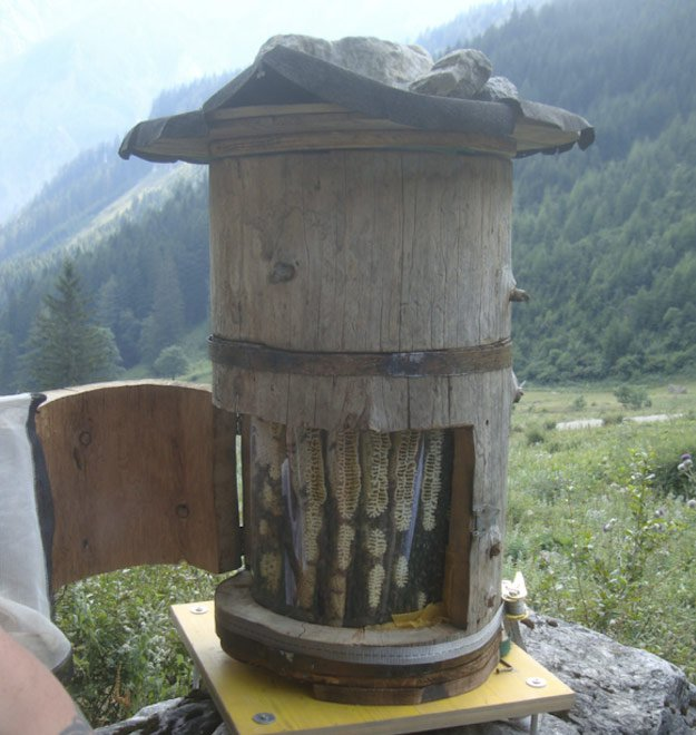 Top 7 Reasons Why The Best Home Bar Design Is A: Build A Home To Help Save Bees