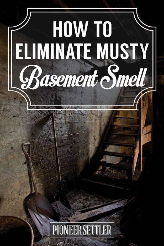 Eliminate Musty Smell In Basement, How To Rid The Basement Of Musty Smells