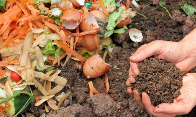 How To Make a Kitchen Compost Bin   Homesteading Tips 17 Homesteading Tips For The All-Around Pioneer Settler   Back To Basics