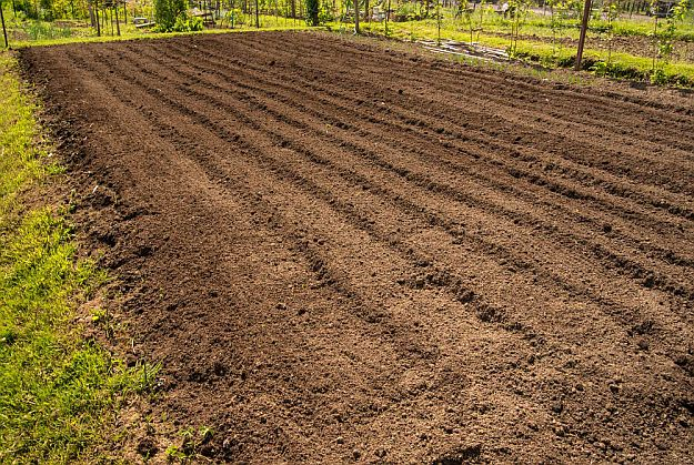 Soil Conservation | Dry Farming on Your Homestead | Types of Farming