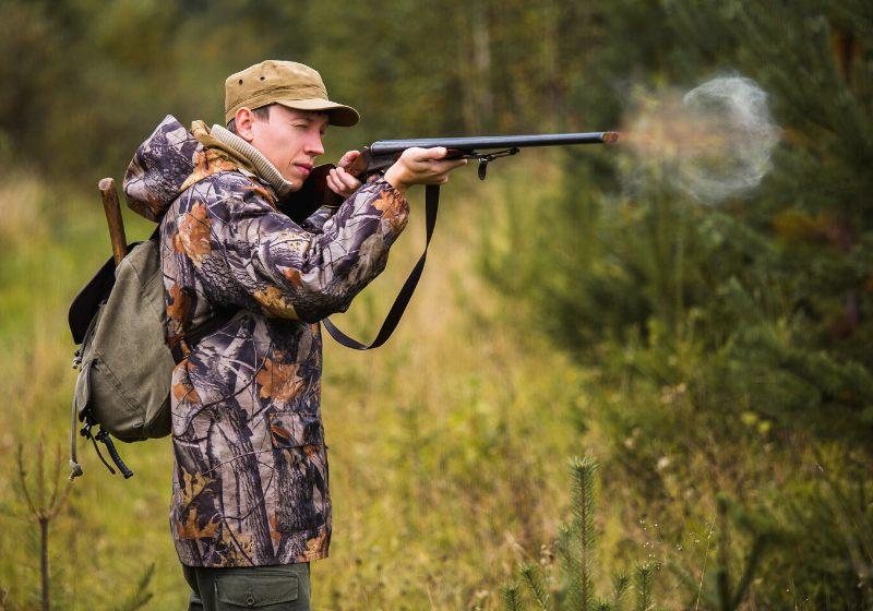 avcı av tüfeğiyle ateş ediyor |  av köpeği nasıl yetiştirilir